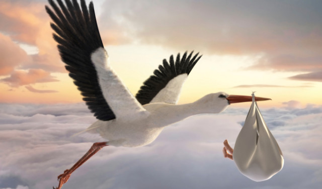 Stork & Baby